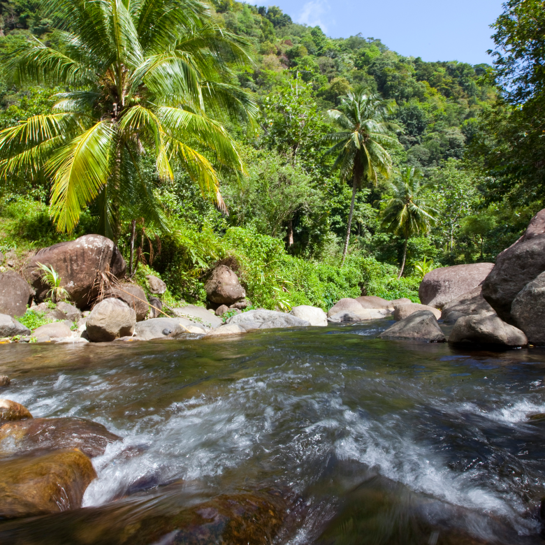Villas for sale Jungle Bay, Dominica, Caribbean. Ideal for the Citizenship By Investment program.